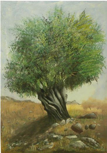 Manto Olivetree