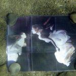 efis-painting_woman_underwater